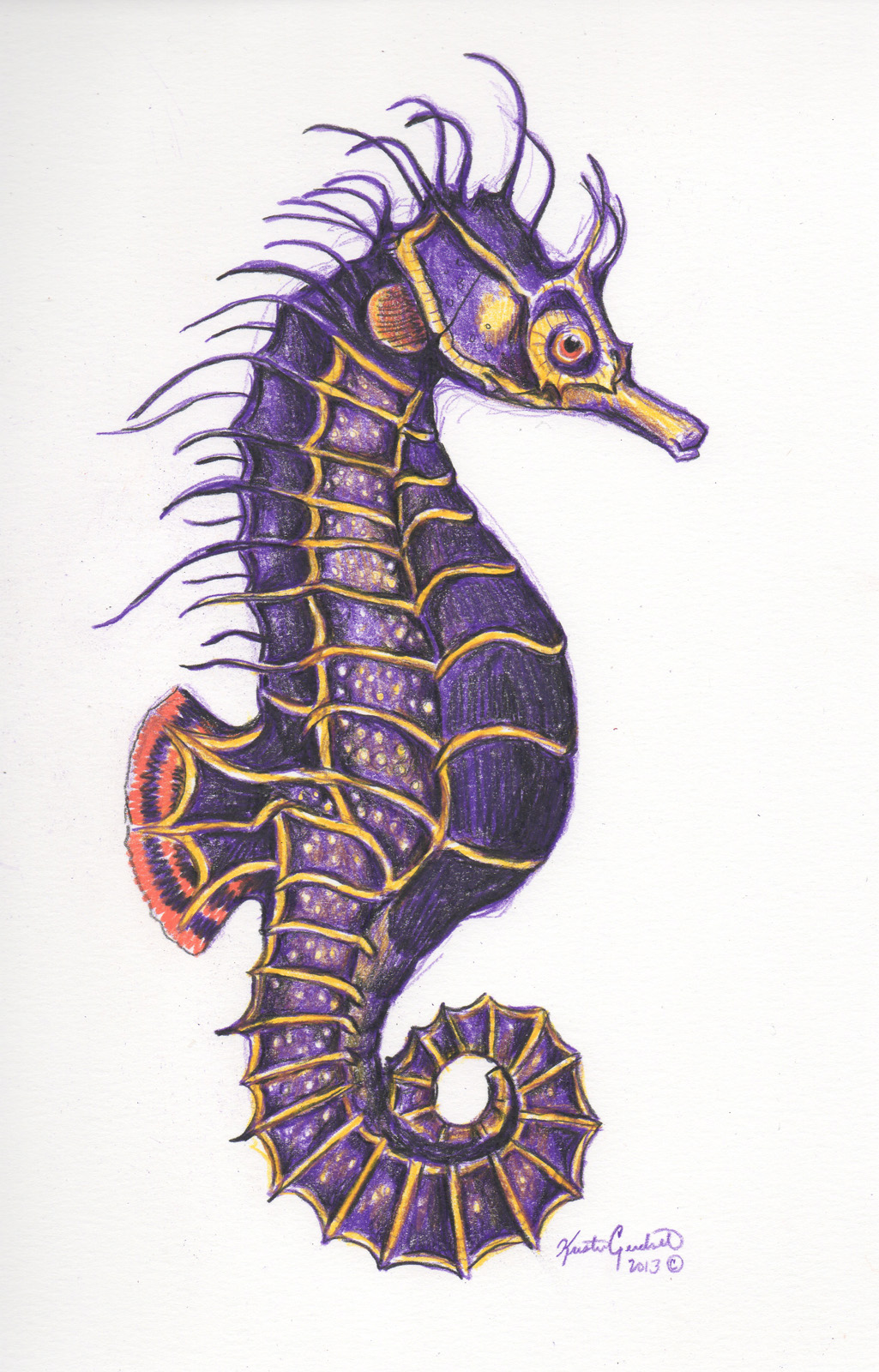 purple seahorse - HD1025×1600