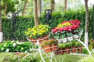 Многолетние цветы (ТОП-50 видов): садовый каталог для дачи с фото и названиями   Видео + Отзывы