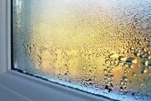 Τι να κάνετε εάν ο ιδρώτας των πλαστικών παραθύρων σε ένα σπίτι ή διαμέρισμα; Αιτίες συμπύκνωσης. Τρόποι για την επίλυση αυτού του προβλήματος (Φωτογραφία & βίντεο) + Κριτικές