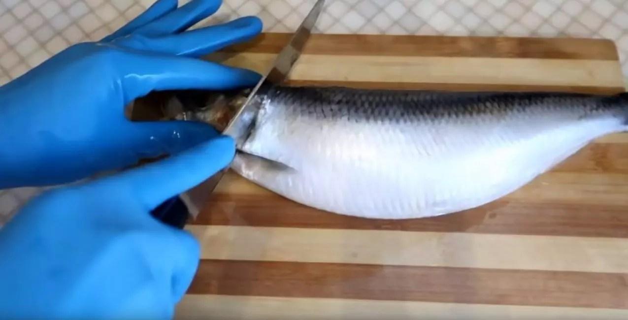 Pinuputol ang ulo ng isang herring
