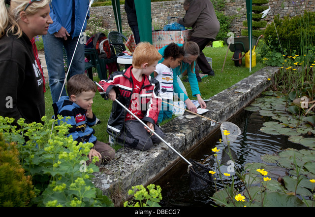 Pond Farm Newington