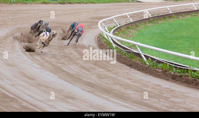 Savannah Georgia Race Track