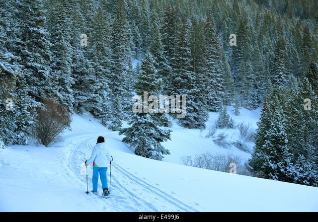 Seven Falls Colorado Trail