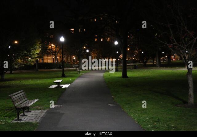 Park Bench Night Girl