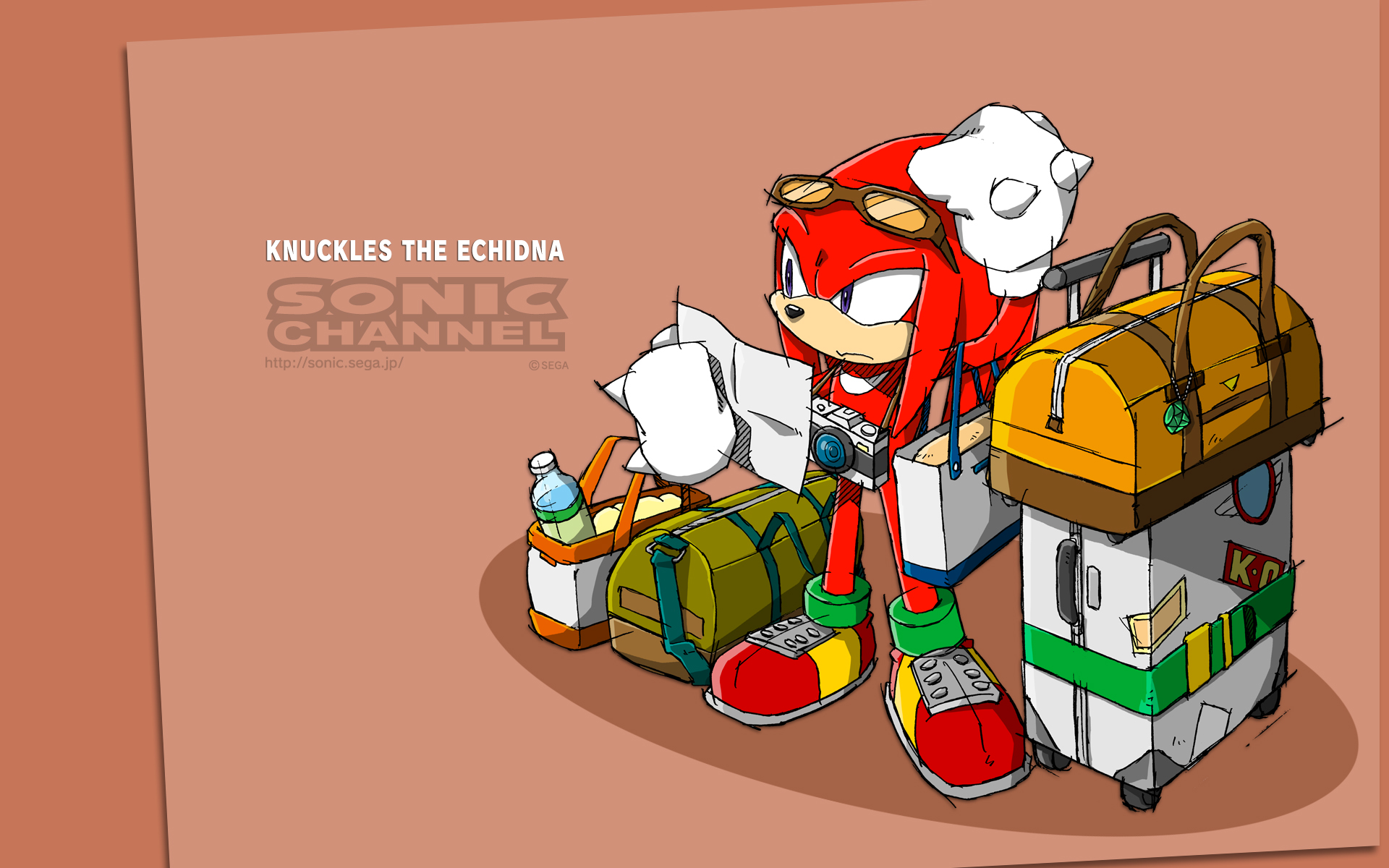 Knuckles Sonic Wiki