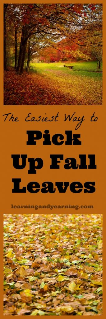 Easiest Way Pick Leaves