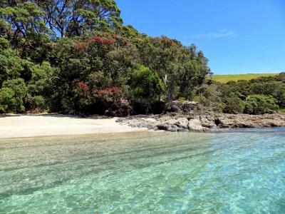 Bay of Islands: Urupukapuka Island Revisited: Urupukapuka ...