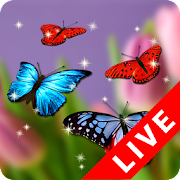 Butterfly Wallpaper   Apps on Google Play Butterfly Wallpaper