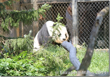 Elizabeth's Secret Garden: Smithsonian National Zoological ...