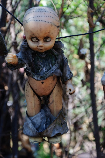 Island Of The Dolls: Mexico's Creepiest Place | Amusing Planet