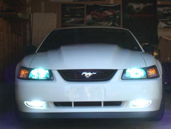 Mustang Fog Light Bulb