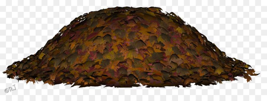 pile of leaves - 1600×582