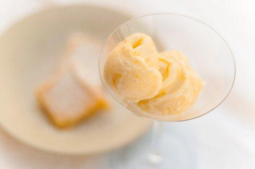 Meyer Lemon Mascarpone Sherbet and Lemon Bars