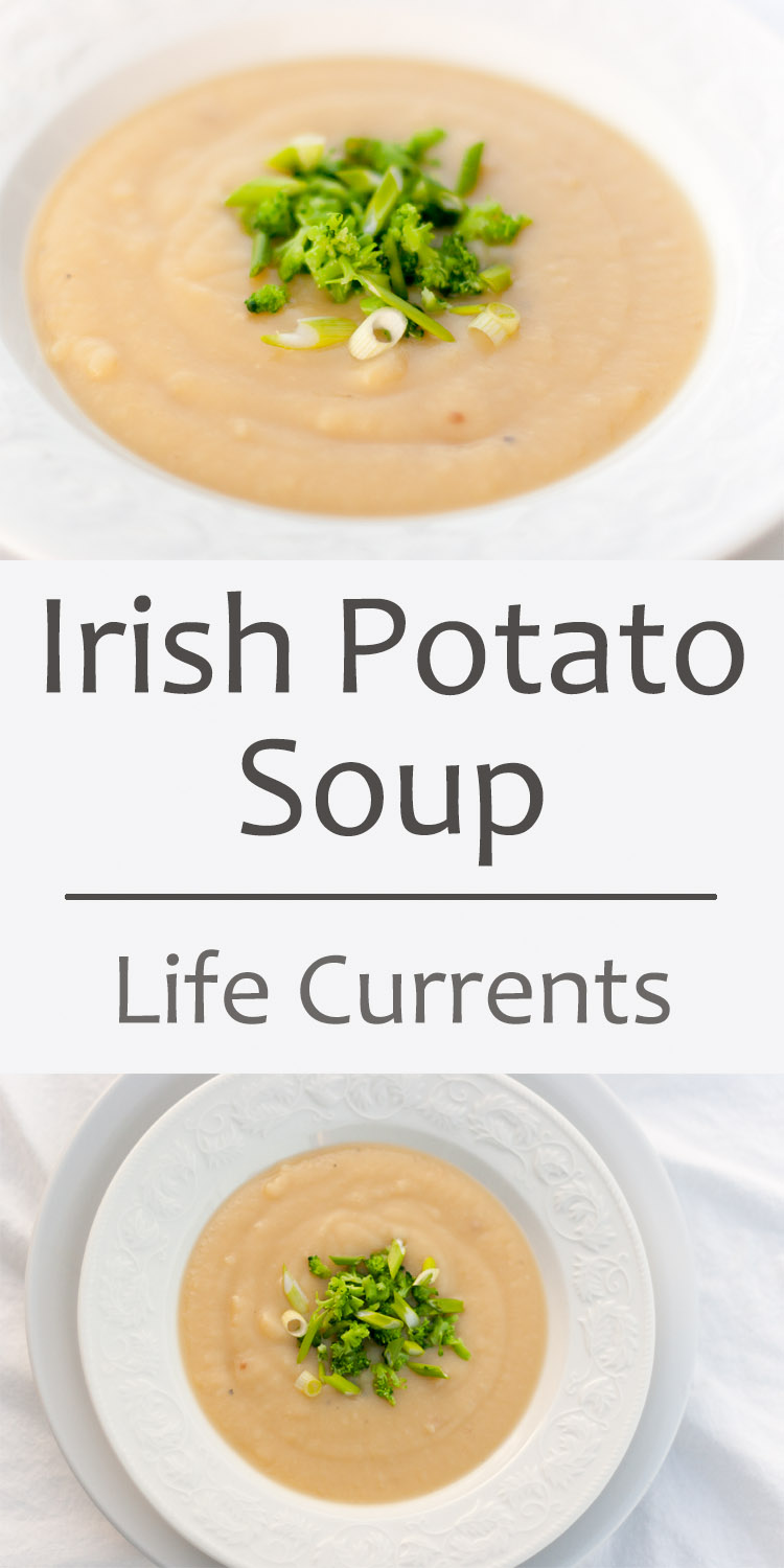 Irish potato soup with roasted garlic, steamed broccoli, and green onions for Saint Patrick's Day or any day