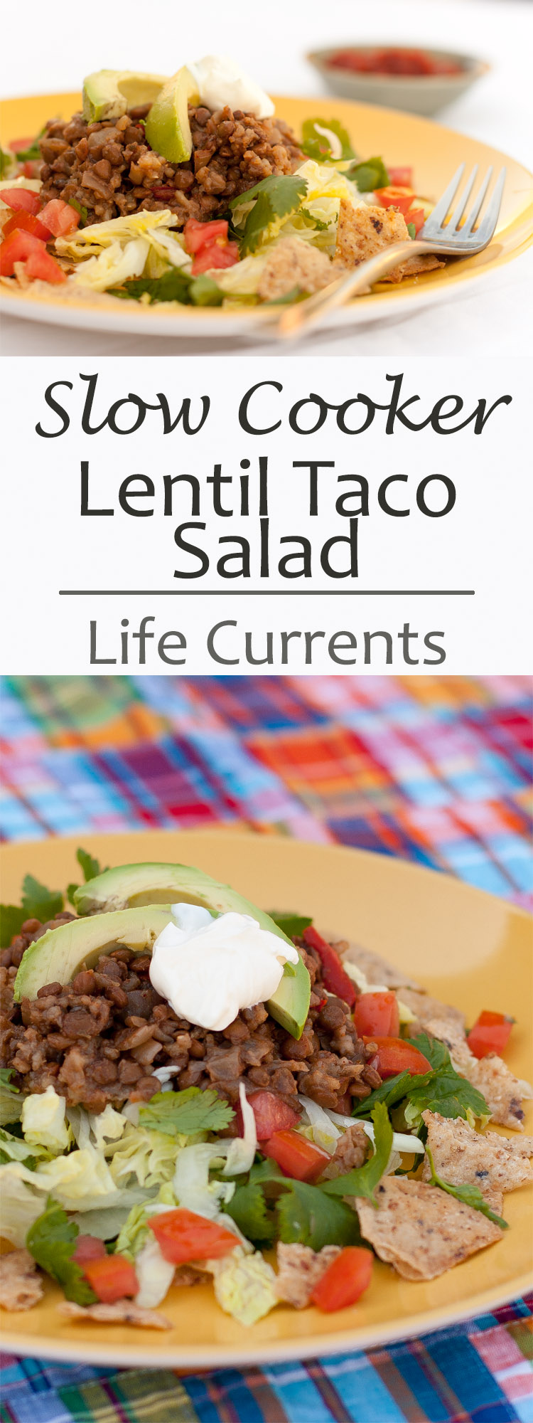 A delicious and easy recipe for Slow Cooker Vegetarian Lentil Taco Salad that you'll love!