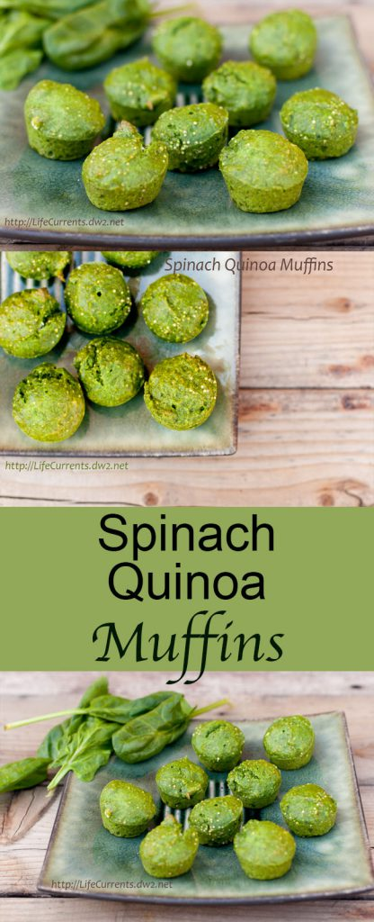 three images for long pin for Pinterest of green muffins with title in the middle: Spinach Quinoa Muffins.