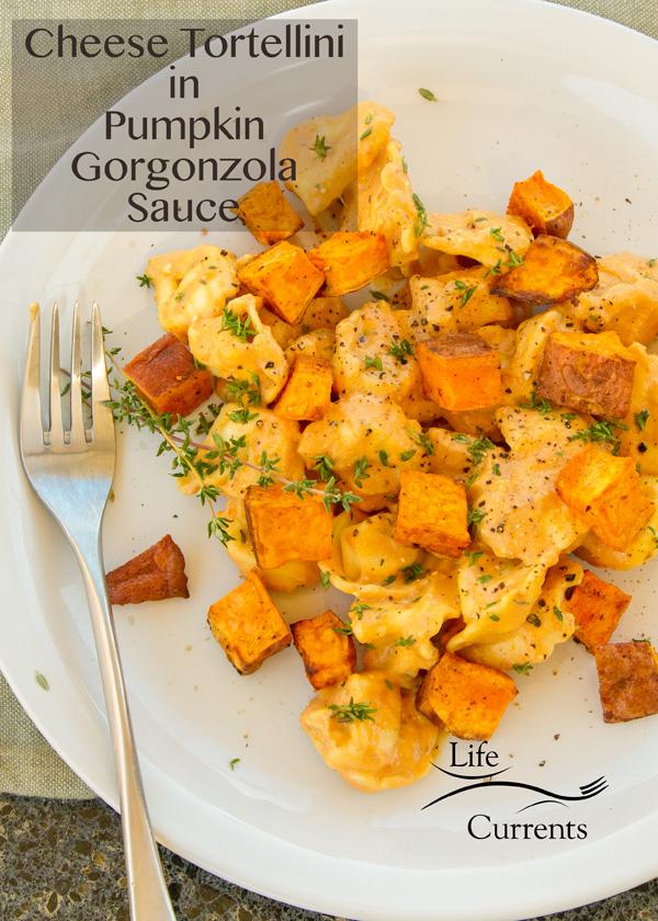 Cheese Tortellini in Pumpkin Gorgonzola Sauce Just says Autumn to my taste buds!