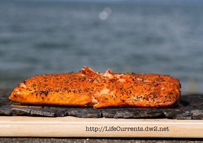 salmon grilled on a cedar plank in front of the ocean