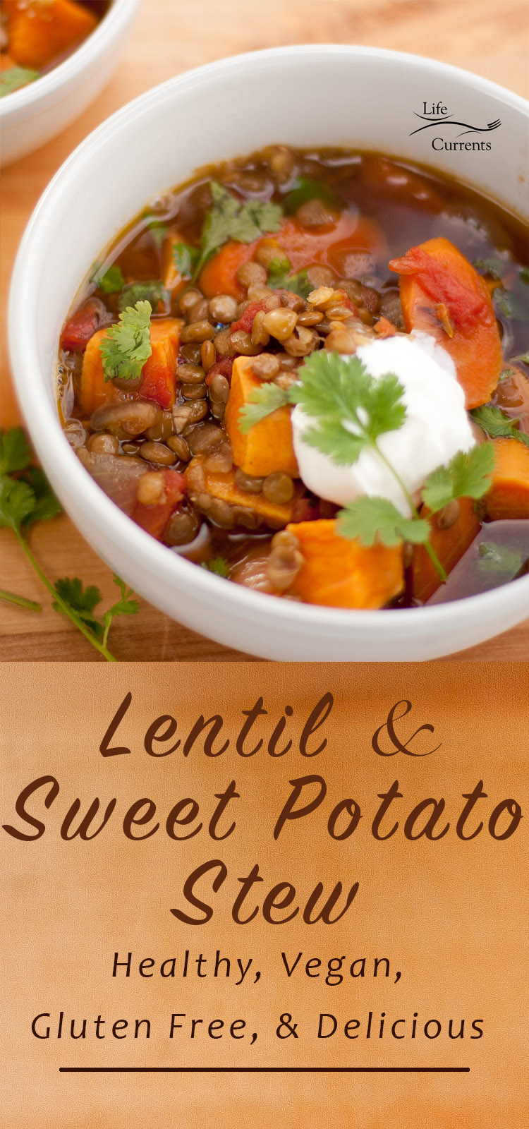 Lentil and Sweet Potato Stew A great, easy to make, healthy vegan dinner that's made with ingredients I usually have in the house