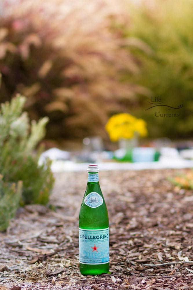 My Basil Lime Sparkling Green Tea is just the thing to refresh and make you happy on a warm summer day. Take it on a picnic. Drink it in your backyard while you sit and enjoy the weather. Drink it at a pool party. Summer doesn't last very long, so make the most of every day.