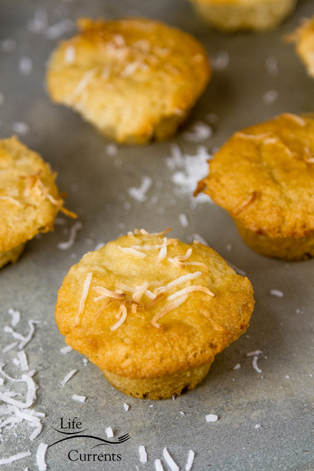 Gluten-Free Coconut Muffins are so good. Filled with coconut flavor; these little muffins of goodness are a coconut lovers dream!