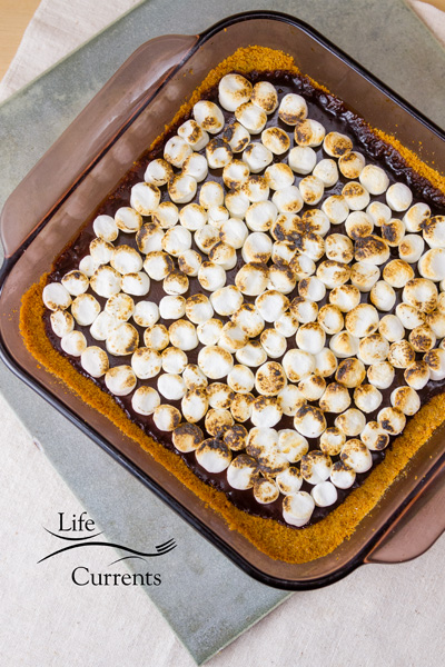 Chocolate S'mores Bars topped off with toasted marshmallows