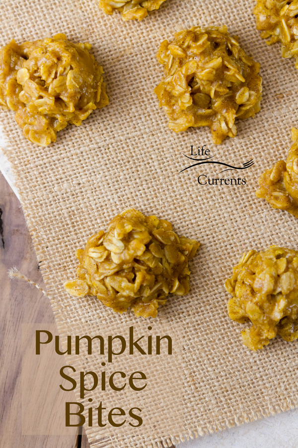 Pumpkin Spice Candy Bites yummy little dessert bites