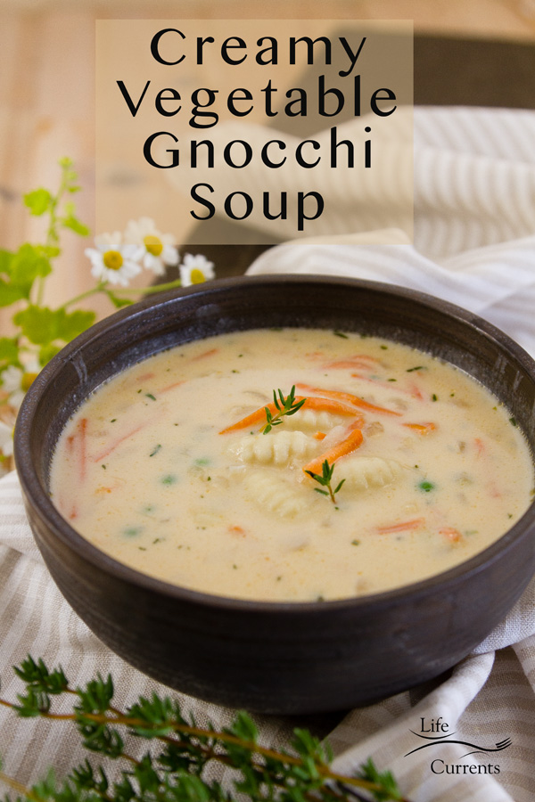 Creamy Vegetable Gnocchi Soup  ith no spinach in a dark bowl, title on image