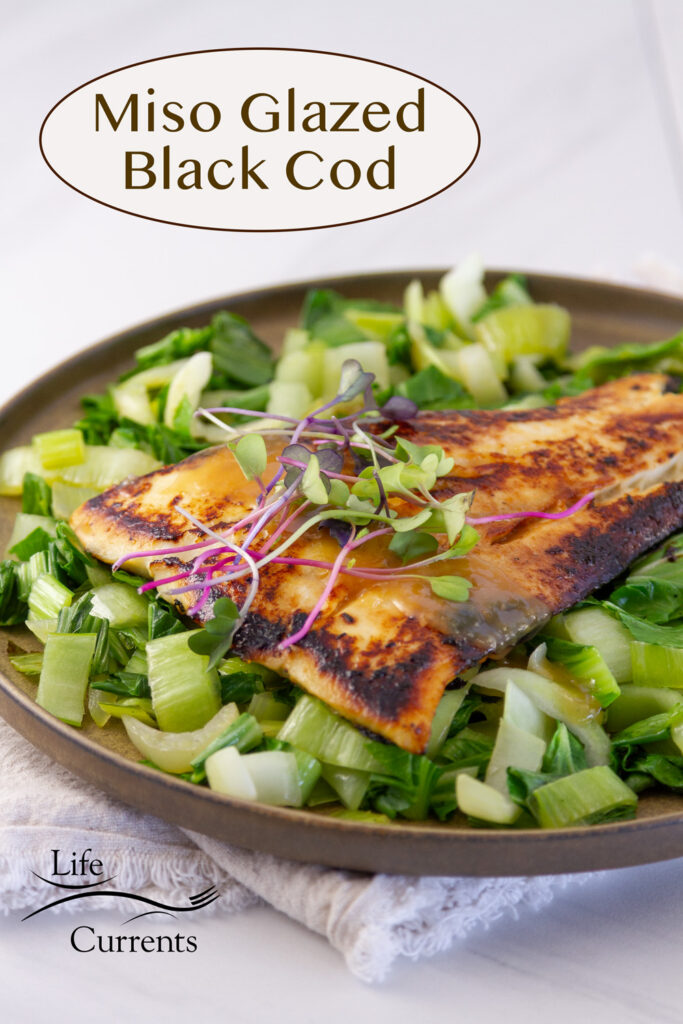 a piece of cooked fish on a bed of bok choy garnished with sauce and sprouts, title on image: Miso Glazed Black Cod.