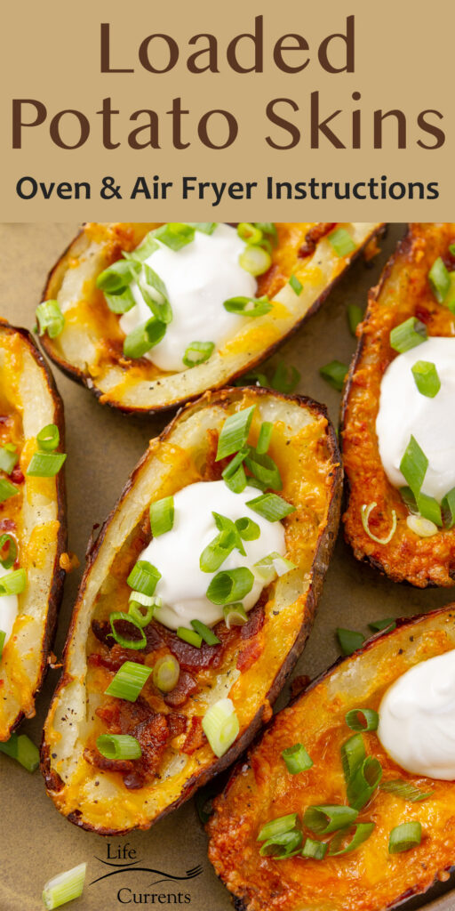 loaded potato skins on a plate with title on top.