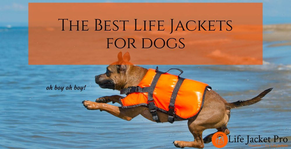 The 5 Best Life Jackets for Dogs 2018