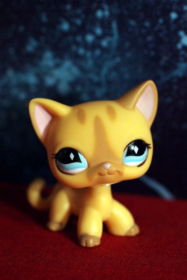 littlest pet shop cats # 64