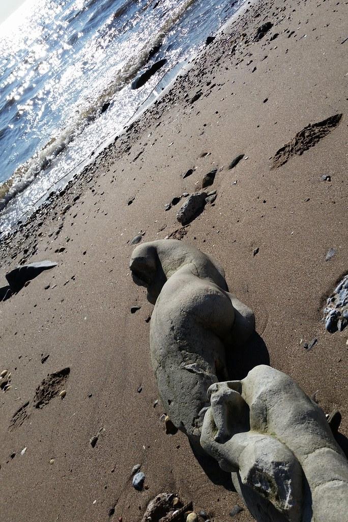 A Bare Bottom On The Beach Matt Green Flickr