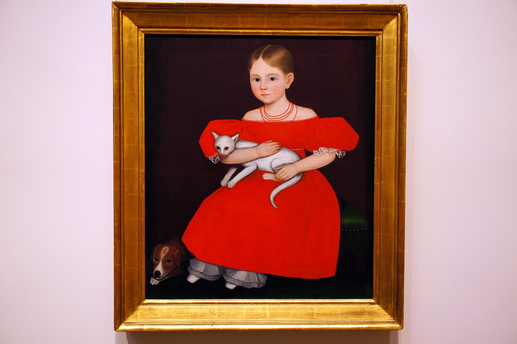 Girl In Red Dress With Cat And Dog Themet 3 Ammi