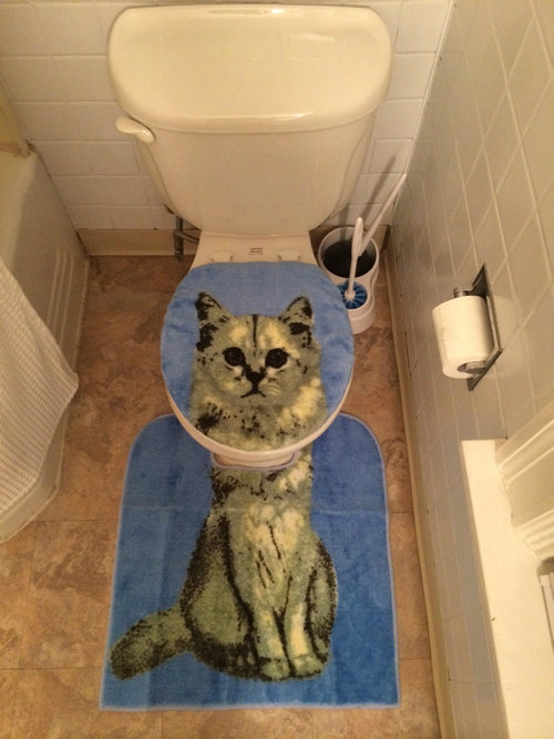 Bathing Cat Toilet