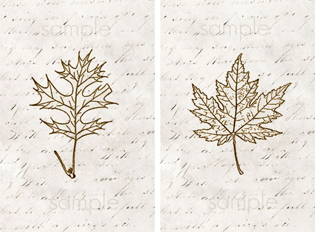 Printable Leaf Art. Maple and Oak Leaves with livelaughrowe.com