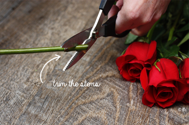 trim the stems, cutting at an angle using floral sheers