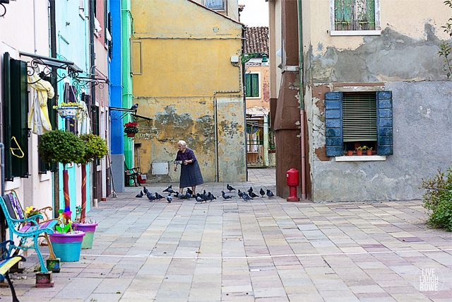 Capturing a woman feeding the pigeons on the Island of Burano. www.livelaughrowe.com