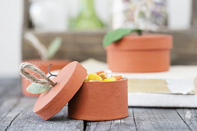 Turn an ordinary paper mache box into one of these adorable Pumpkin Treat Boxes! livelaughrowe.com