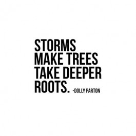 """July 2017 Calendar with inspirational quote by Dolly Parton, """"Storms make trees take deeper roots."""" Print yours at livelaughrowe.com"""