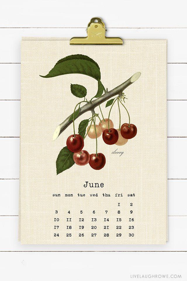 Beautiful Vintage Botanical Fruit Printable Calendar for 2018. Print one for yourself and a friend! livelaughrowe.com