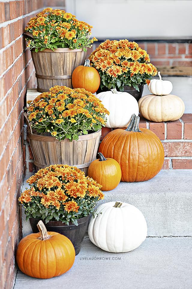 Pumpkins and Mums. Fall Porch Decor