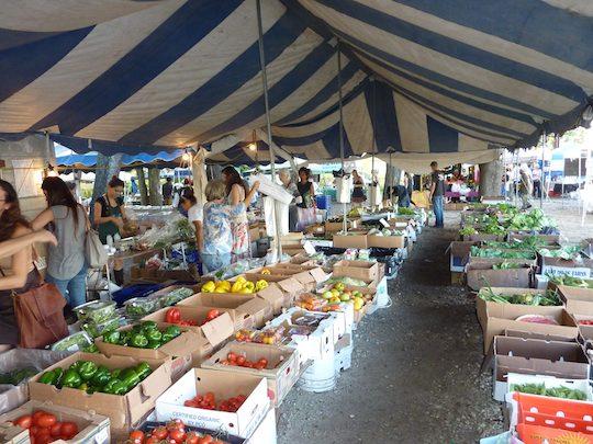 Fresh Market Coconut Grove Hours