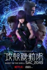 Ghost in the Shell: SAC_2045 Season 1