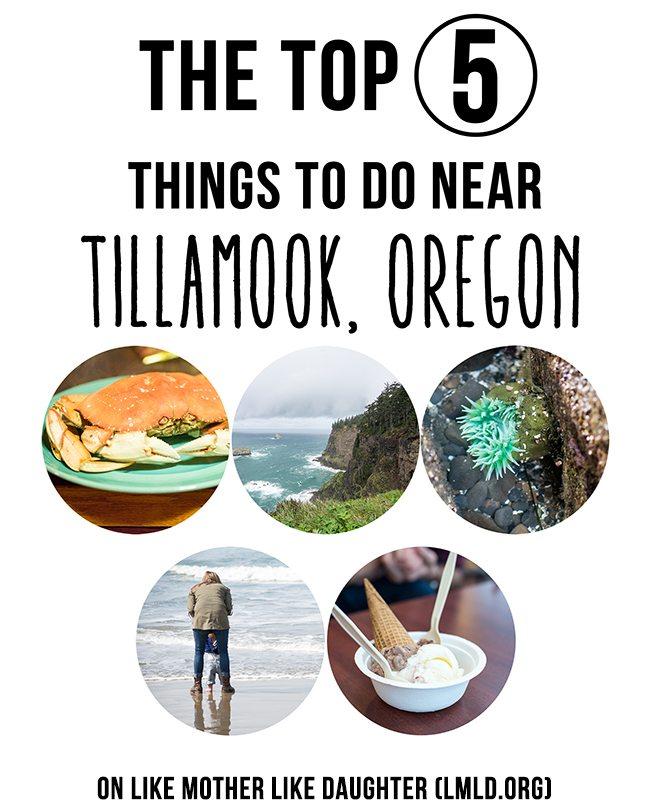 the top 5 tillamook smaller