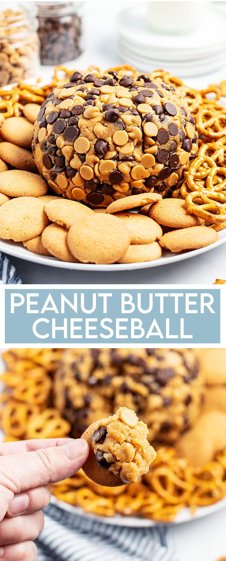 """A peanut butter cheese ball wrapped in chocolate chips and peanut butter chips on a plate with pretzels and cookies, there is a text overlay at the bottom that says """"Peanut Butter Cheeseball"""", and underneath some of the cheeseball is on a nilla wafer cookie."""