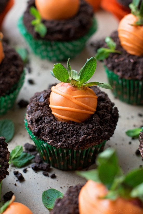 Chocolate cupcakes topped with chocolate frosting, and oreo crumbs to look like dirt, with an orange chocolate covered strawberry to look like a carrot growing.