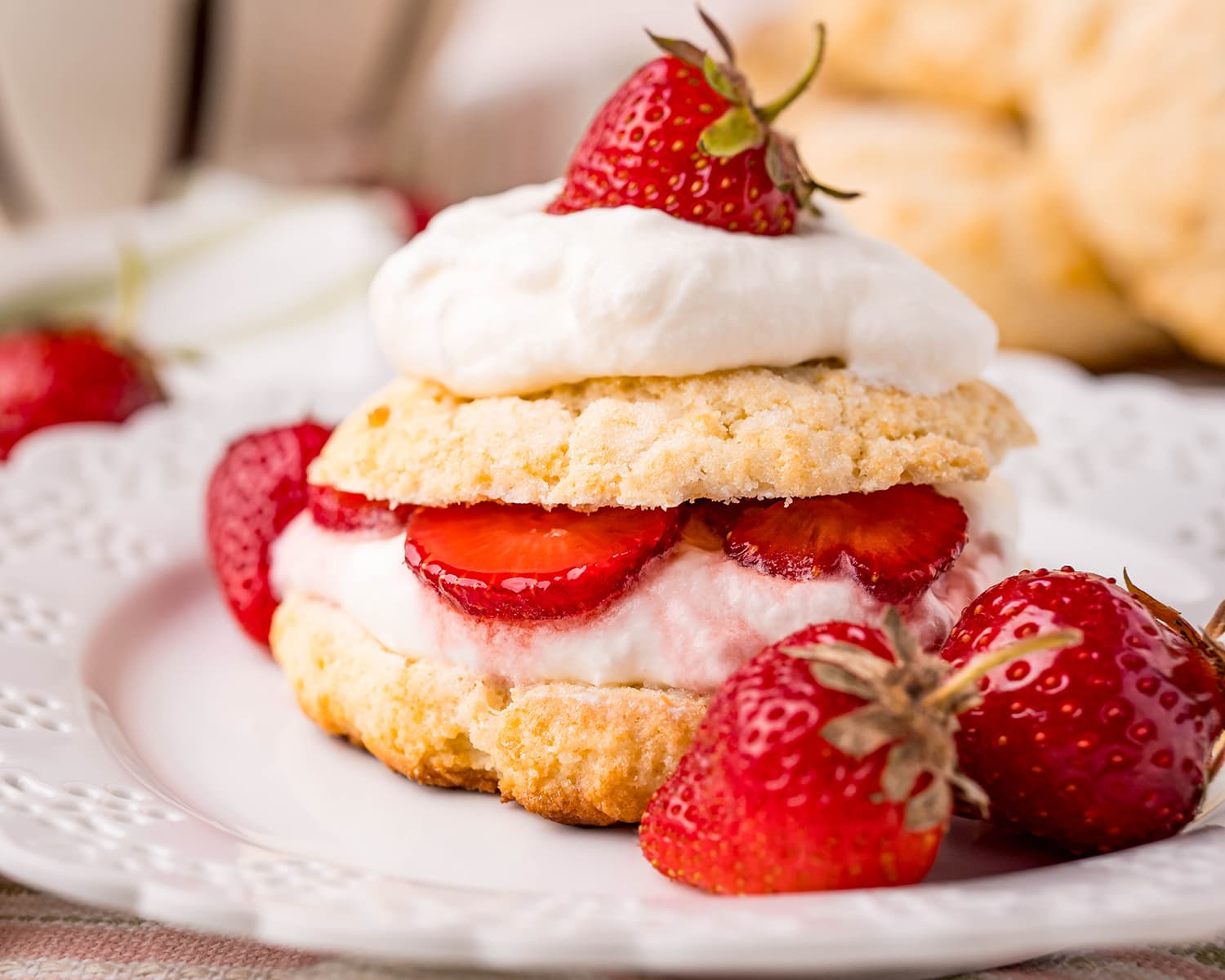 A strawberry shortcake on a plate, with a sweet biscuit, whipped cream, and strawberries.