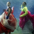Thumbnail image for Hanbok designs by Park Sul-nyeo in aquarium fashion shoot