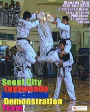 Featured image for post: Empowering the Taekwondo Generation: TKD demos in London and southern England